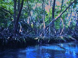 Mangroven - Laguna Gri-Gri