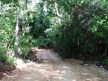Strasse zur Playa Moron